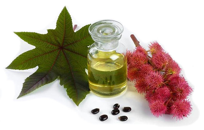Castor Oil Health Benefits