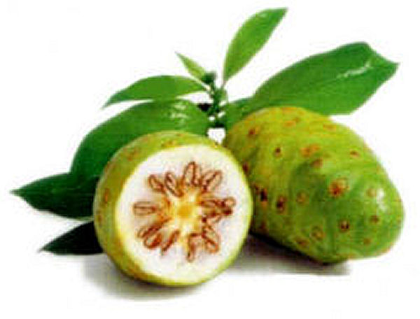 Health Benefits of Noni